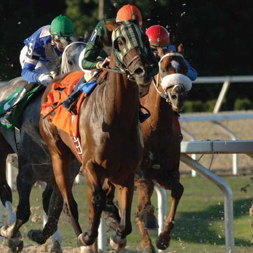 Presque Isle Downs horse racing